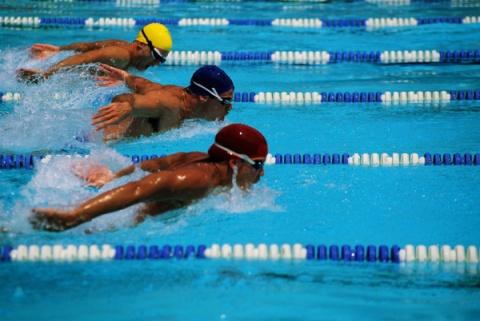 На чемпионате мира по водным видам спорта Запорожскую область представят четыре спортсмена
